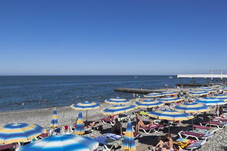 groyne: Beach of Seagull in the resort settlement Adler, Sochi, Krasnodar region, Russia