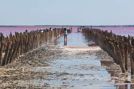 Evpatoria, Crimea, Russia - July 23, 2020: Remains of a wooden dam on the pink lake Sasyk-Sivash near the city of Evpatoria, Crimea