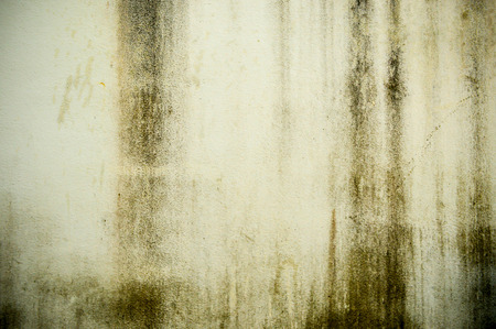 green house effect: Dirty wall Stock Photo