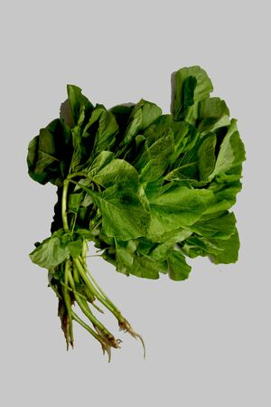 Spinach is a vegetable that contains vitamins and minerals that are quite complete. The content of vitamins owned by spinach starting from vitamin A, vitamin B, vitamin C, and vitamin K. In addition, the main minerals owned by spinach are magnesium, iron, folic acid, calcium, potassium, and sodium. Stok Fotoğraf