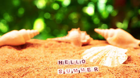 Hello summer text from letter cubes on sandy beach with seashells Stock fotó