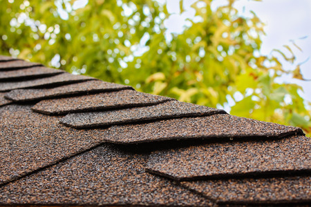 asphalt shingles: roof of house on background of sky and tree