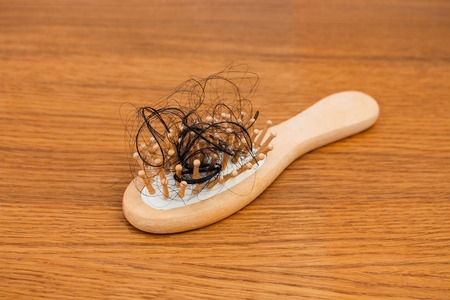 Fallen hair on the comb