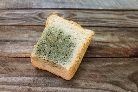mildewed: Old white mold on bread. Spoiled food. Mold on food.