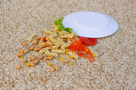 Plate of food fell on a beige carpet.