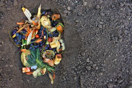 Domestic waste for compost from fruits and vegetables in garden. Banco de Imagens - 131144862