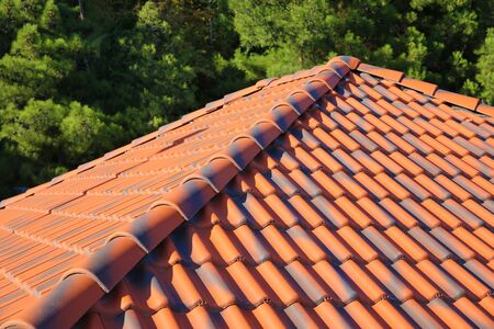 Tiled roof of house on background of trees.