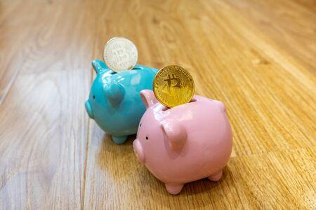 Bitcoin inserted in ceramic piggy banks for saving