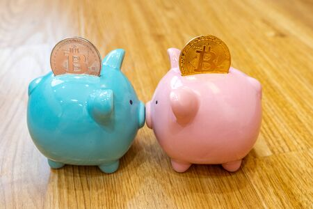 Two ceramic piggybanks and bitcoin inserted for cryptocurrency saving