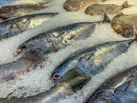 Frozen fish for sale at seafood supermarket