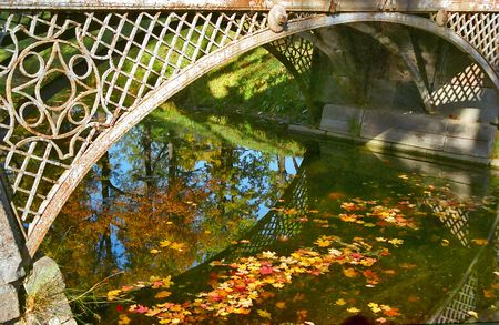 Red and yellow fallen leaves are in water under the bridge Stock Photo