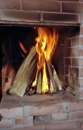Burning wood in fireplace from red brick