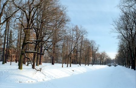 Aqueduct with trees in winter park photo