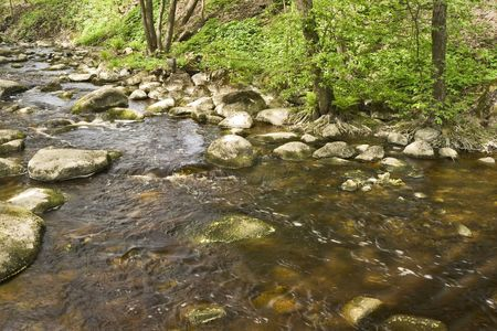 rock bottom: Stream of a small river with rocky bottom Stock Photo
