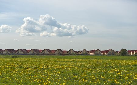 New cottages quarter and field of yellow dandelions photo