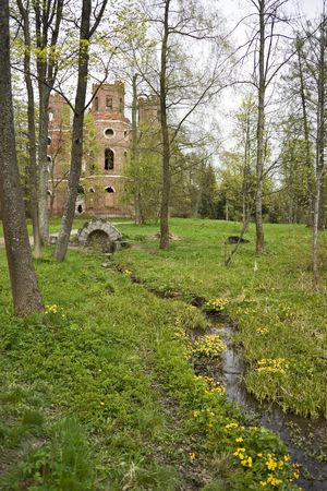 fountainhead: Spring-well with yellow flowers and ruins behind