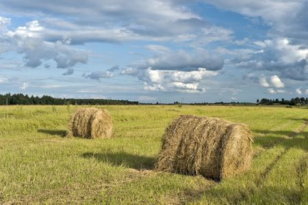 contryside: Haystacks on the field and cloudscape Stock Photo