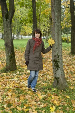 Pretty girl with autumn maple leaves in hand next to tree  photo