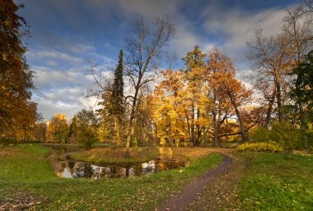 �tang et de beaux arbres d'automne dans le parc