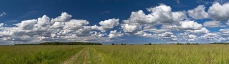 earth road: Campo panorama di erba verde con la strada di terra e cloudscape