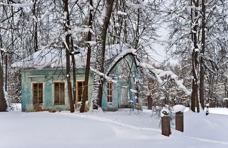 frozen trees: Park pavilion among frozen trees in winter