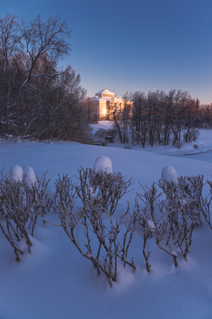glaring: Pavlovsky palace witn glaring sunlight reflection at window in winter day and funny snow hat over bush, Pavlovsk, Russia Editorial