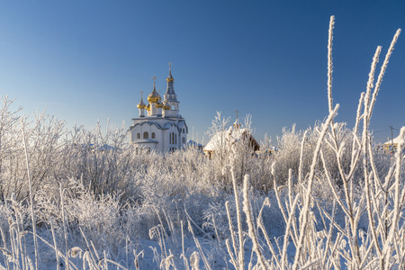 cupolas: Orthodox Church with golden cupolas and hoar frosted bushes in cold winter day Stock Photo