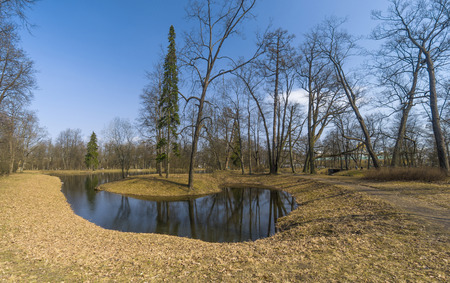 awakening: Early Spring in the park with the pond, yellow last years grass and awakening trees