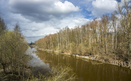 Izhora river with awakening trees in Early Spring day, Russia Stock Photo