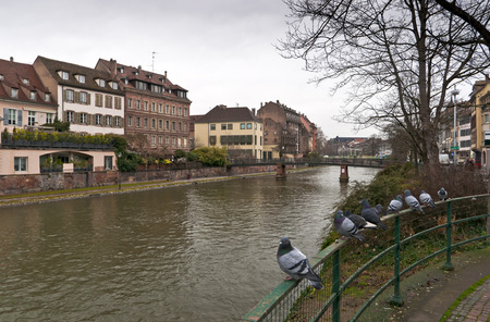 River Ile in Strasbourg with buildings, bridge, quay and doves on the fence in cold cloudy day Stock Photo