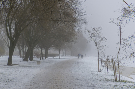 Winter mist in the park next to the river with trees and senior humans silhouettes distantly, monocle lens