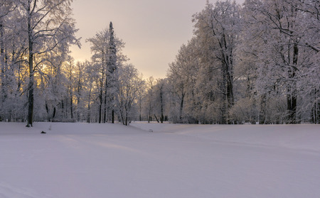Snow covered pond in the park with hoar frosted trees and picturesque sun set Stock Photo