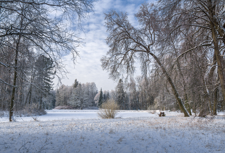 Snow covered park and pond with bench and cloudy sky Stock Photo