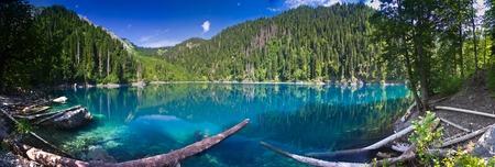Natural landscape.  Panorama view of the lake Small Ritsa. Trees reflecting in the blue from lapis lazuli water. Ritsa National Park, Abkhazia, Georgia Archivio Fotografico