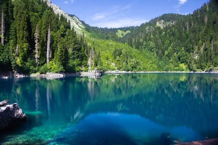 Natural landscape.  View of the lake Small Ritsa. Hanging rock and trees reflecting in the water. Ritsa National Park, Abkhazia, Georgia