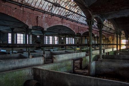 Abandoned stabling for cattle in German slaughterhouse Rosenau Stock Photo
