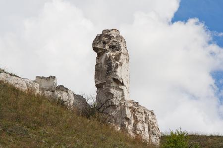 cretaceous: Cretaceous poles - remnants of ancient sea, called Diva, Divnogorye village, Voronezh Region, Russia