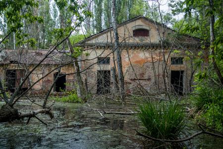 Old flooded overgrown ruined abandoned forsaken industrial building among bog after the flood disaster
