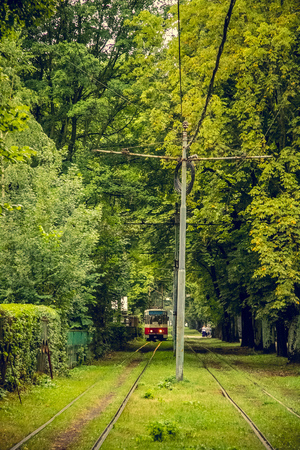 path to romance: Tram line runs in the thickets of trees. Red tram at the perspective distance. Tram goes through a tunnel in the forest park Stock Photo
