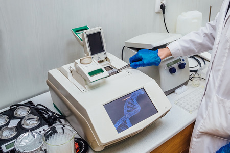 Scientist with gloved hand putting DNA sample into real-time PCR-cycler 스톡 콘텐츠