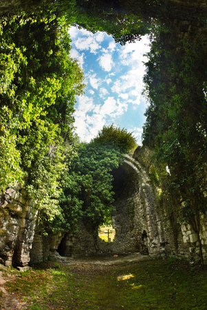 Overgrown ruins of ancient church VI-VII century, Abkhazia Stock Photo