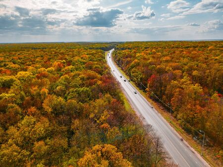 Road in autumn forest, cloudy sky, aerial view.