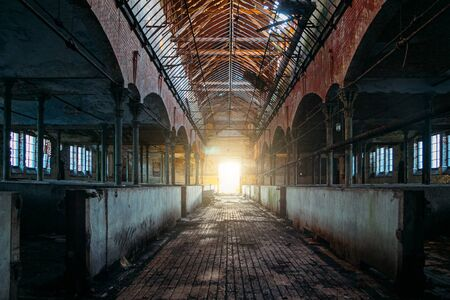 Inside old abandoned German stable or barn with horse boxes Stok Fotoğraf