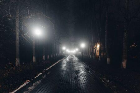 Parque de la ciudad de otoño por la noche en la niebla. Foto de archivo