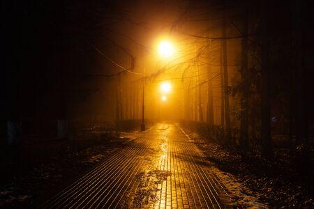 Jesienny park miejski nocą we mgle.