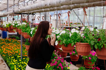 Attractive young woman smelling white flowers in pot in greenhouse. Archivio Fotografico