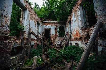 Overgrown ruins of abandoned mansion. Former baron von Derviz manor, Ryazan region.