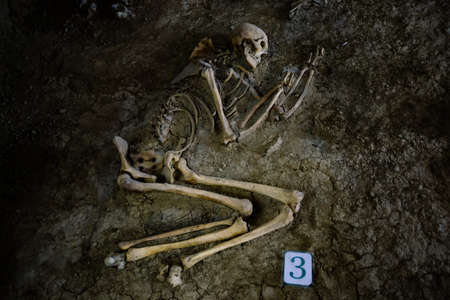 Old human skeleton in ancient tomb at archaeological excavation. Stock Photo