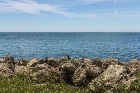 Beautiful nature landscape view. Rocky coast line. Blue water surface of Atlantic ocean merging with blue sky. Key West, Florida.