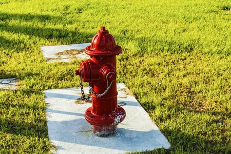 Close up view of red fire hydrant cock on green grass background. Imagens